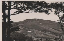 Brotterode - Inselsberg V. Tenneberg - 1935 - Schmalkalden