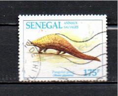 Timbre Oblitére Du Sénégal  1994 - Senegal (1960-...)