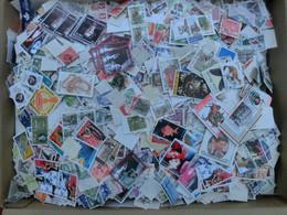 3 Kg Briefmarken Alle Welt, Sondermarken, Freimarken Ohne Papier - Kilowaar (min. 1000 Zegels)