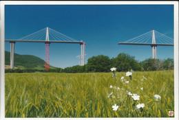Viaduc De Millau -Photo Collée Sur Un Support De Carte Postale. Designer: Foster And Partners - (P) - Millau
