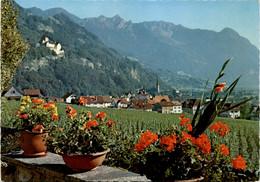 Vaduz Mit Schloss, Fürstentum Liechtenstein (2) - Liechtenstein
