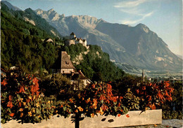 Vaduz, Fürstentum Liechtenstein (5) - Liechtenstein