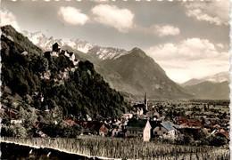 Vaduz Mit Schloß, Fürstentum Liechtenstein (118) - Liechtenstein