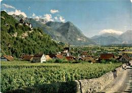 Vaduz Mit Schloss, Fürstentum Liechtenstein (53) - Liechtenstein