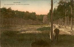 België - Averbode - Kikvorschenpoel - 1912 - Non Classificati