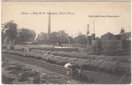 29681g   BOIS DE ST GHISLAIN - PUITS N° 5 - Dour - Dour
