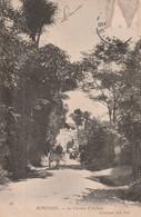 ROBINSON Le Chemin D Aulnay 5timbre Décolé) - Sonstige Gemeinden