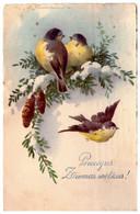 C.Klein.Birds. HWB SER 2865 - Klein, Catharina