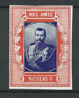 Rare VIGNETTE Patriotique Non DELANDRE Russie Nicolas II - WWI - WW1 Poster Stamp Cinderella 1914 1918 - Vignettes Militaires