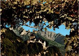 Schloß Vaduz - Fürstentum Liechtenstein (48) - Liechtenstein