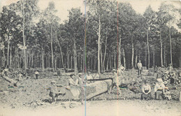 CPA 51 MARNE Port-à-Binson Les Roches Exploitation Forestière - Bucherons - Scieurs - Cerseuil Mareuil-le-Port - Autres Communes