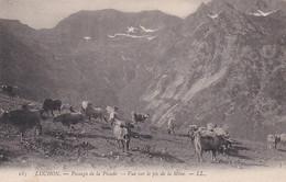 4841  207 Luchon, Passage De La Picade- Vue Sur Le Pic De La Mine - Luchon