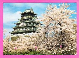 E-Japon-19P79  OSAKA, Le Château Ceint De Cerisiers En Pleine Floraison, BE - Osaka