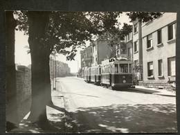 Photographie Originale De J.BAZIN : Tramways De LUXEMBOURG : BONNEVOIE En 1956 - Trains