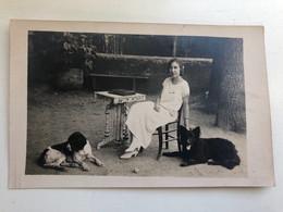 Foto Ak Femme Avec Chiens - Dogs