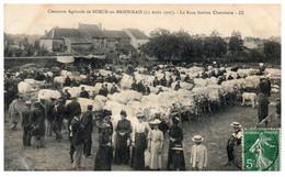 71 Concours Agricole De SEMUR-en-BRIONNAIS - La Race Bovine Charolaise - Altri Comuni
