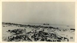 SECTEUR DUNKERQUE MALO 1940 PHOTO OSFELD 11 X 6.50 CM - Guerre, Militaire