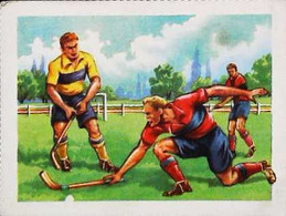 ►  Image Hockey Sur Gazon    Les Biscottes Grégoire - Other