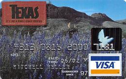 Texas Visa Credit Card Exp 06/02 - Credit Cards (Exp. Date Min. 10 Years)