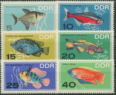 DDR 1966 Tiere Fische Zierfische 1221/26 Postfrisch - Neufs