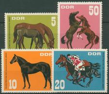DDR 1967 Tiere Pferde Vollblutmeeting 1302/05 Postfrisch - Neufs
