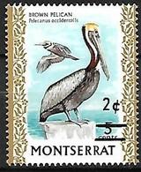 Montserrat - MNH ** 1976 :  Brown Pelican  -  Pelecanus Occidentalis (changed Value) - Pelicans