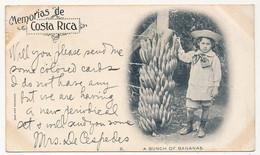 CPA - COSTA RICA - A Bunch Of Bananas - Costa Rica