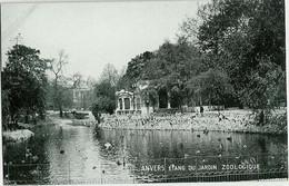 Anvers - Etang Du Jardin Zoologique - Other