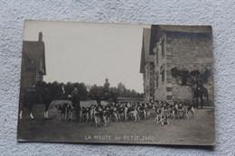 Carte Photo De Chasse à Courre, La Meute Du Petit Jard - Fotografie