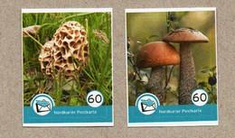 M01] BRD - Privatpost - Nordkurier - 2 Werte - Pilze Mushrooms Champignons Hongos - Privées & Locales