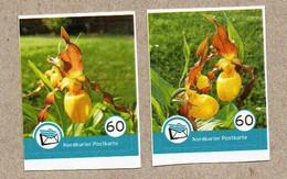 M01] BRD - Privatpost - Nordkurier - 2 W - Orchideen Orquídeas Orchids - Gelber Frauenschuh (Cypripedium Calceolus) - Private & Local Mails