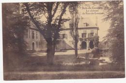 48418 -   Bois-de-Lessines   Le Chateau  De Bois-de-Lessines - Lessines