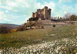 12 - Compeyre - Château De Cabrieres - CPM - Voir Scans Recto-Verso - Sonstige Gemeinden