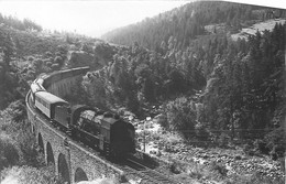 100721 - TRANSPORT CHEMIN DE FER TRAIN LOCO - PHOTO 43 Viaduc Du Bois De Laine Rauret LANGOGNE JONCHERES 111H - Autres Communes