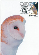 MAX 36 - 116 OWL, Romania - Maximum Card - 2006 - Eulenvögel