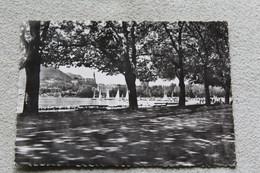 A811, Cpm 1961, Annecy, La Promenade Avenue D'Albigny, Au Fond La Visitation, Haute Savoie 74 - Annecy