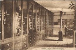 57   Bitche  -  Le College - Musee Zoologique - Bitche