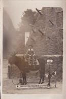 CLICHE PHOTOGRAPHIQUE - EXPOSITION COLONIALE PARIS 1931 - CARTE PHOTO SOUVENIR JEUNE ENFANT SUR UN ANE MULET - Plaatsen