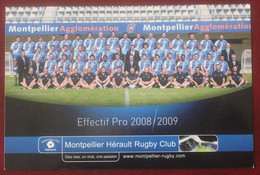 Rugby : Montpellier Herault Rugby Club  , Saison 2008-2009 - Rugby