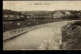 CP ( Jemelle : Panorama  ) Obl. ARLON - BRUXELLES (BRUSSEL) 2 Le  25 (à L'envers) 1921 - Ambulants