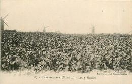 49* CHAMPTOCEAUX  7 Moulins    MA86,0756 - Champtoceaux