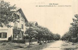 64* HENDAYE  Av De Magnolias         MA88,0279 - Hendaye