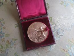 Médaille  - Sir John Pope HENNESSY Gouverneur Ile Maurice - 1888 - Graveur O. Roty - Royaux / De Noblesse