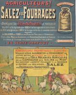 Publicité - Salins Du Midi, Montpellier - Agriculteurs, Salez Vos Fourrages Avec Les Sels Agicoles - Lot De 2 Flyers - Advertising