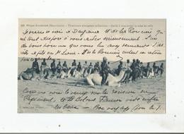 MAURITANIE (AFRIQUE OCCIDENTALE) 362 TIRAILLEURS SENEGALAIS MEHARISTES . GARDE A VOUS AVANT LA MISE EN SELLE - Mauritania