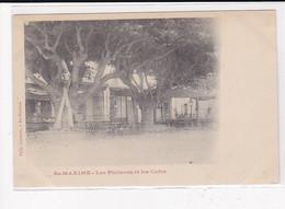 SAINTE-MAXIME : Les Platanes Et Les Cafés - Très Bon état - Sainte-Maxime
