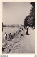 ALLIER VICHY CONCOURS DE PECHE SEPTEMBRE 1953 - Sporten
