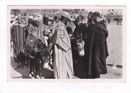 CPSM.  14 X 9  -  SCENES  &  TYPES DU  MAROC.  -  Les Souks : Le Marché Aux Anes - Marrakesh