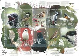 Nederland NVPH 3872-81 V3872-81 Vel Beleef De Natuur Heidevogels 2020 Postfris MNH Netherlands Fauna Birds - Nuovi