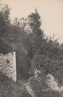 Boissy-L'Aillerie / L'Oiseau Bleu - L'entrée Du Petit Bois - Boissy-l'Aillerie